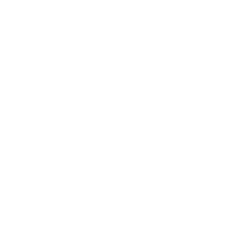Buffalo Pizza Project